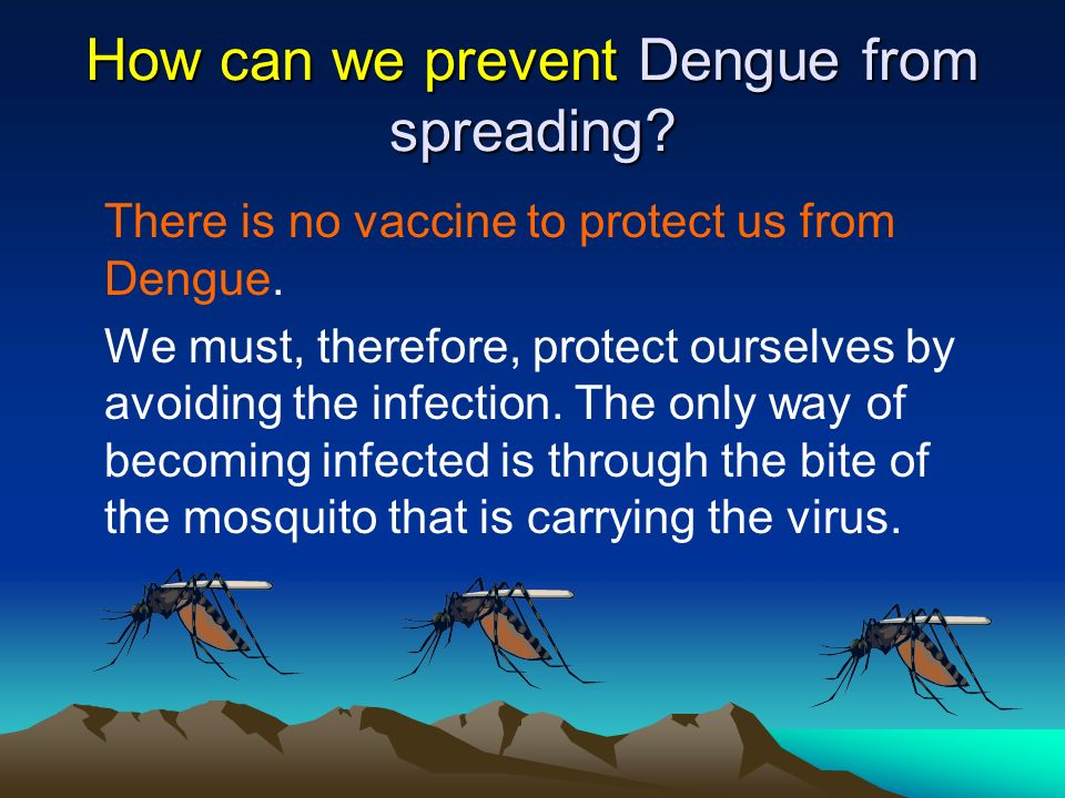 How can we prevent Dengue from spreading? There is no vaccine to protect us from Dengue. We must, therefore, protect ourselves by avoiding the infecti