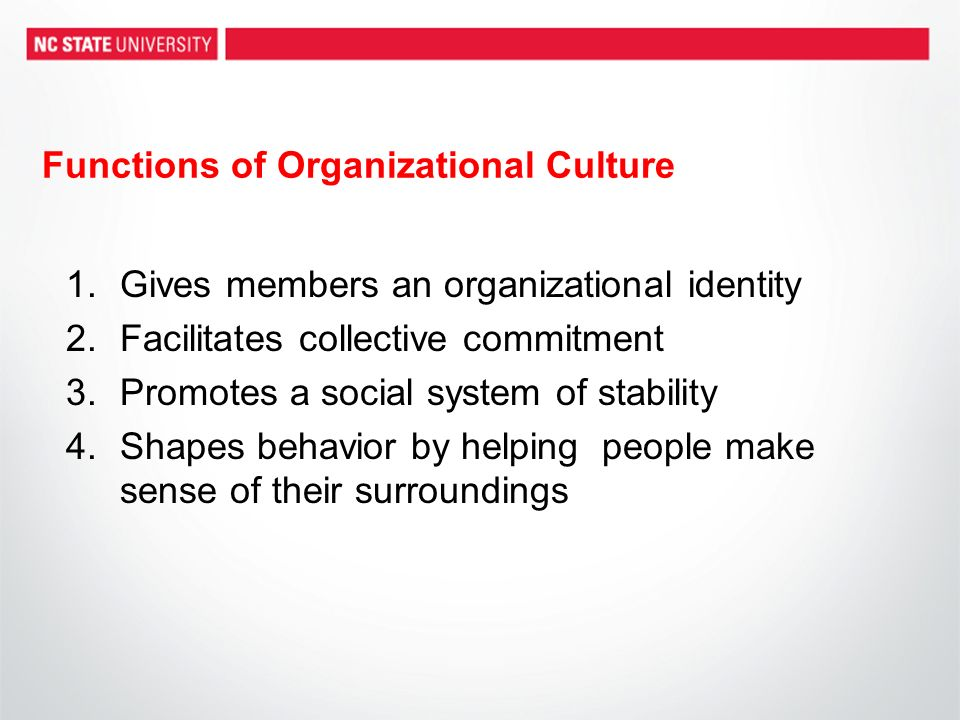 Functions of Organizational Culture 1.Gives members an organizational identity 2.Facilitates collective commitment 3.Promotes a social system of stabi