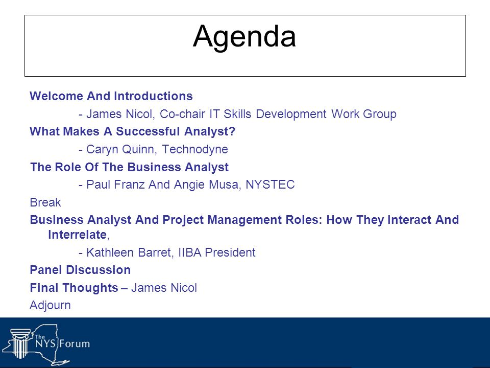 Agenda Welcome And Introductions - James Nicol, Co-chair IT Skills Development Work Group What Makes A Successful Analyst? - Caryn Quinn, Technodyne T