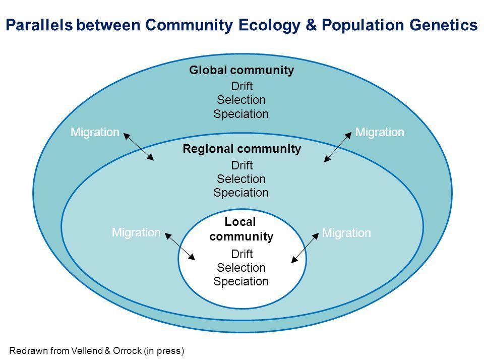 Local community Regional community Global community Drift Selection Speciation Drift Selection Speciation Drift Selection Speciation Migration Redrawn