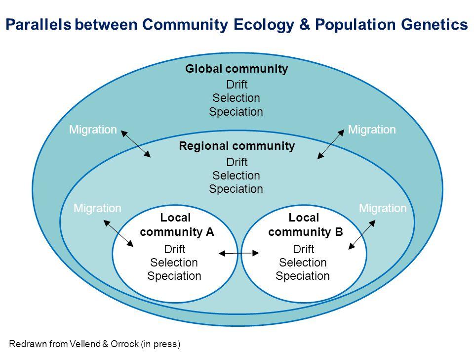 Local community A Regional community Global community Drift Selection Speciation Drift Selection Speciation Drift Selection Speciation Migration Local
