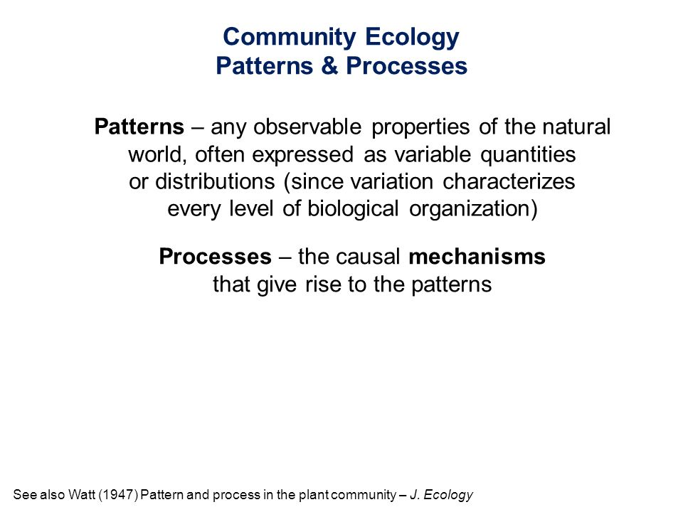 Patterns – any observable properties of the natural world, often expressed as variable quantities or distributions (since variation characterizes ever