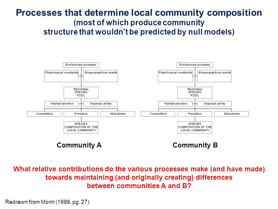 Community A Community B What relative contributions do the various processes make (and have made) towards maintaining (and originally creating) differ