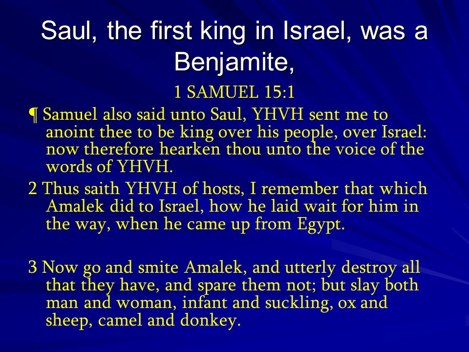 Saul, the first king in Israel, was a Benjamite, Saul, the first king in Israel, was a Benjamite, 1 SAMUEL 15:1 ¶ Samuel also said unto Saul, YHVH sen