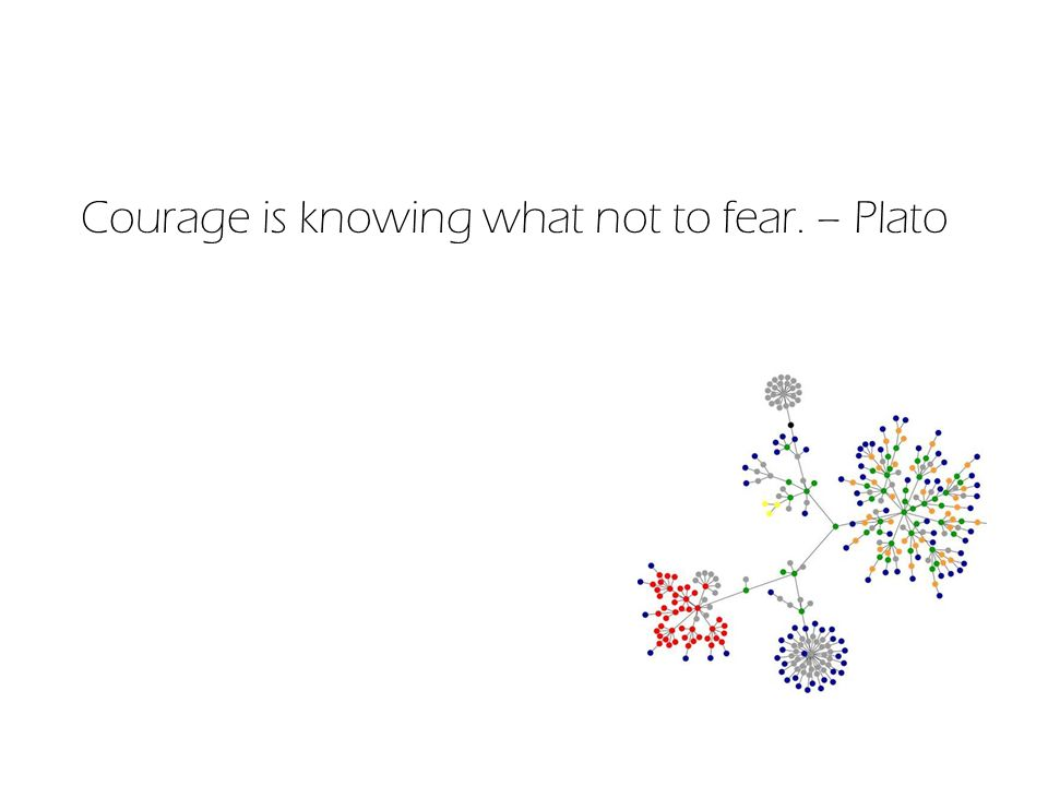 Courage is knowing what not to fear. – Plato