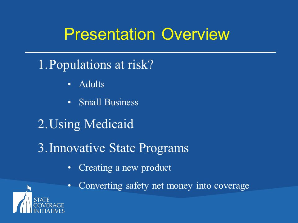Presentation Overview 1.Populations at risk? Adults Small Business 2.Using Medicaid 3.Innovative State Programs Creating a new product Converting safe