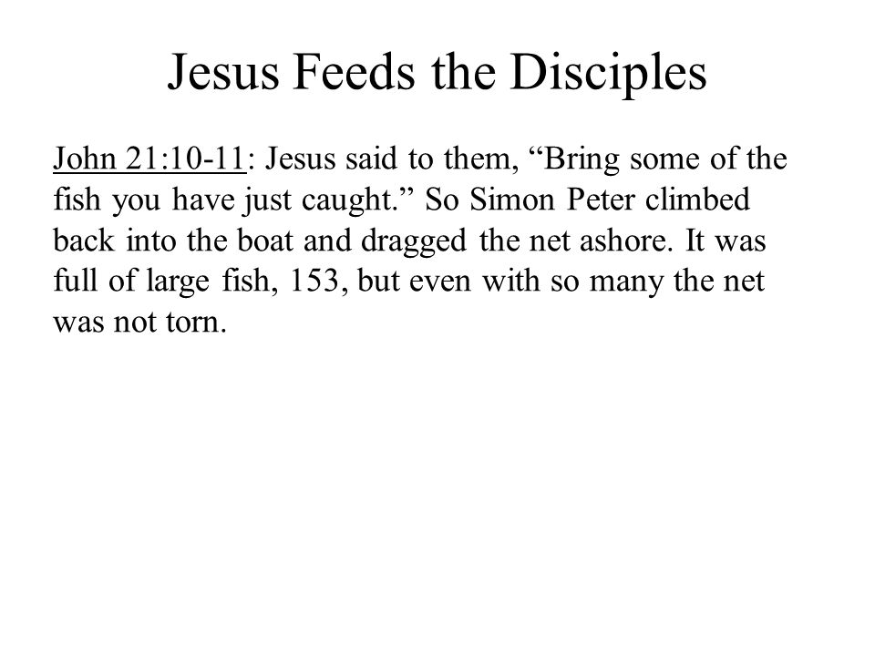 Jesus Feeds the Disciples John 21:10-11: Jesus said to them, Bring some of the fish you have just caught.