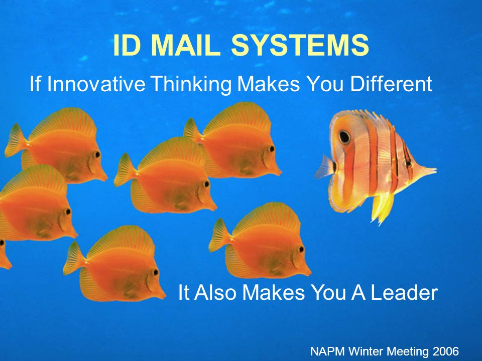 If Innovative Thinking Makes You Different ID MAIL SYSTEMS It Also Makes You A Leader NAPM Winter Meeting 2006