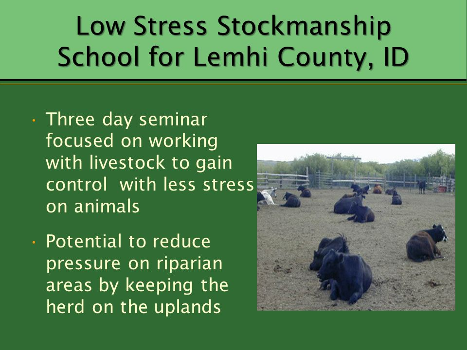 Low Stress Stockmanship School for Lemhi County, ID Three day seminar focused on working with livestock to gain control with less stress on animals Po