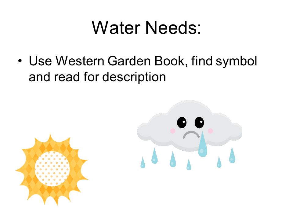 Water Needs: Use Western Garden Book, find symbol and read for description