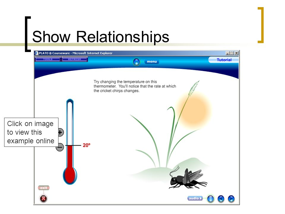 Show Relationships Click on image to view this example online