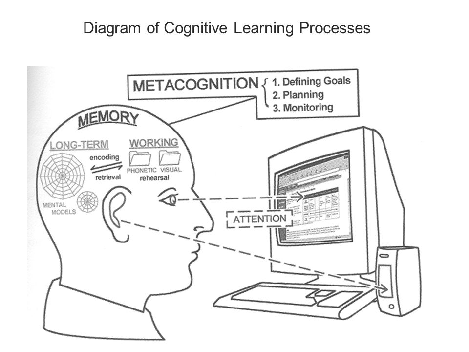 Diagram of Cognitive Learning Processes
