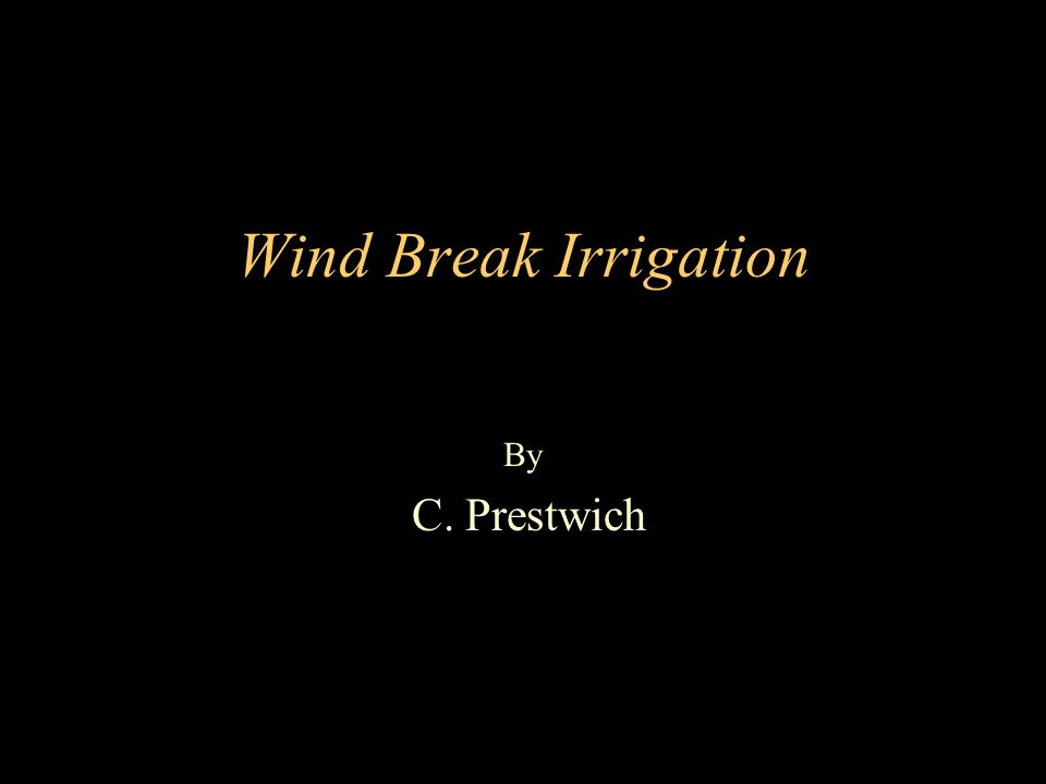 Wind Break Irrigation By C. Prestwich