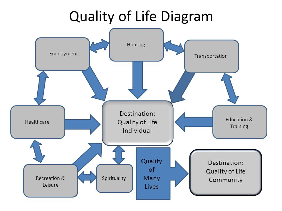Quality of Life Diagram Destination: Quality of Life Individual Destination: Quality of Life Community Employment Education & Training Transportation