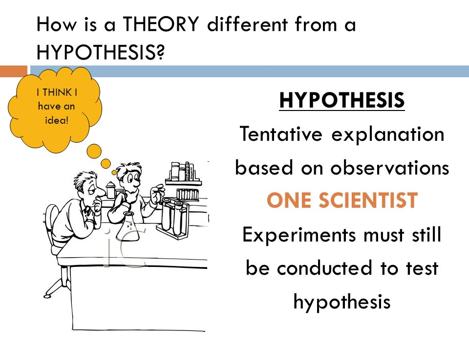 How is a THEORY different from a HYPOTHESIS? HYPOTHESIS Tentative explanation based on observations ONE SCIENTIST Experiments must still be conducted