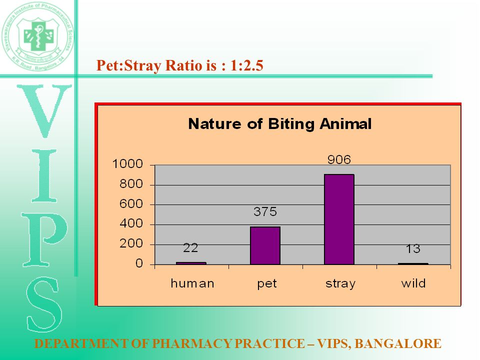 Pet:Stray Ratio is : 1:2.5 DEPARTMENT OF PHARMACY PRACTICE – VIPS, BANGALORE