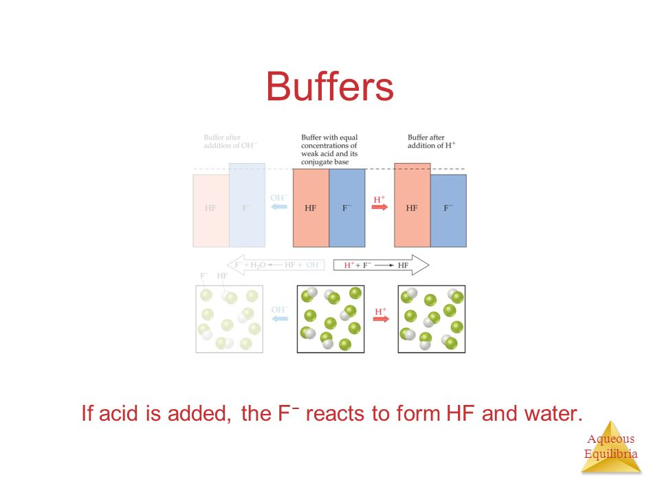 Aqueous Equilibria Buffers If acid is added, the F reacts to form HF and water.