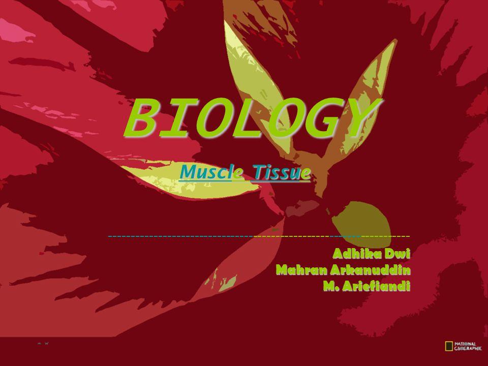 BIOLOGY Muscle Tissue ------------------------------------------------------------------- Adhika Dwi Mahran Arkanuddin M. Ariefiandi