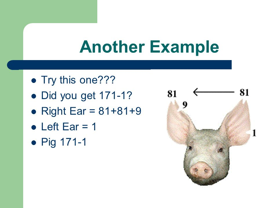Another Example Try this one??? Did you get 171-1? Right Ear = 81+81+9 Left Ear = 1 Pig 171-1