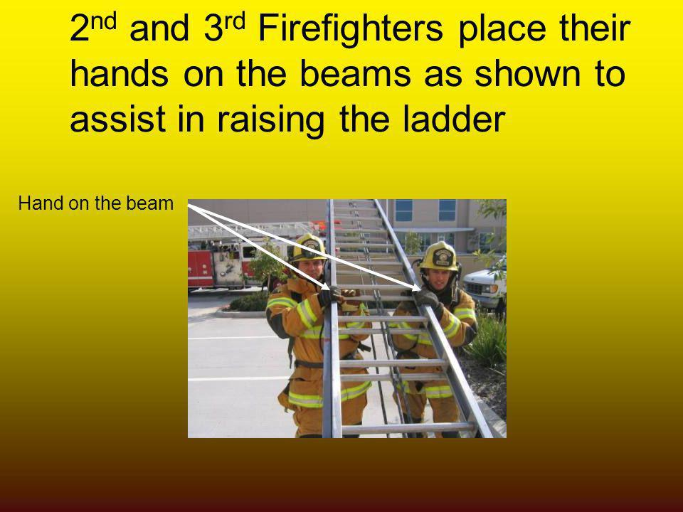 2 nd and 3 rd Firefighters place their hands on the beams as shown to assist in raising the ladder Hand on the beam