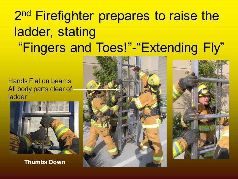 2 nd Firefighter prepares to raise the ladder, stating Fingers and Toes!-Extending Fly Hands Flat on beams All body parts clear of ladder Thumbs Down