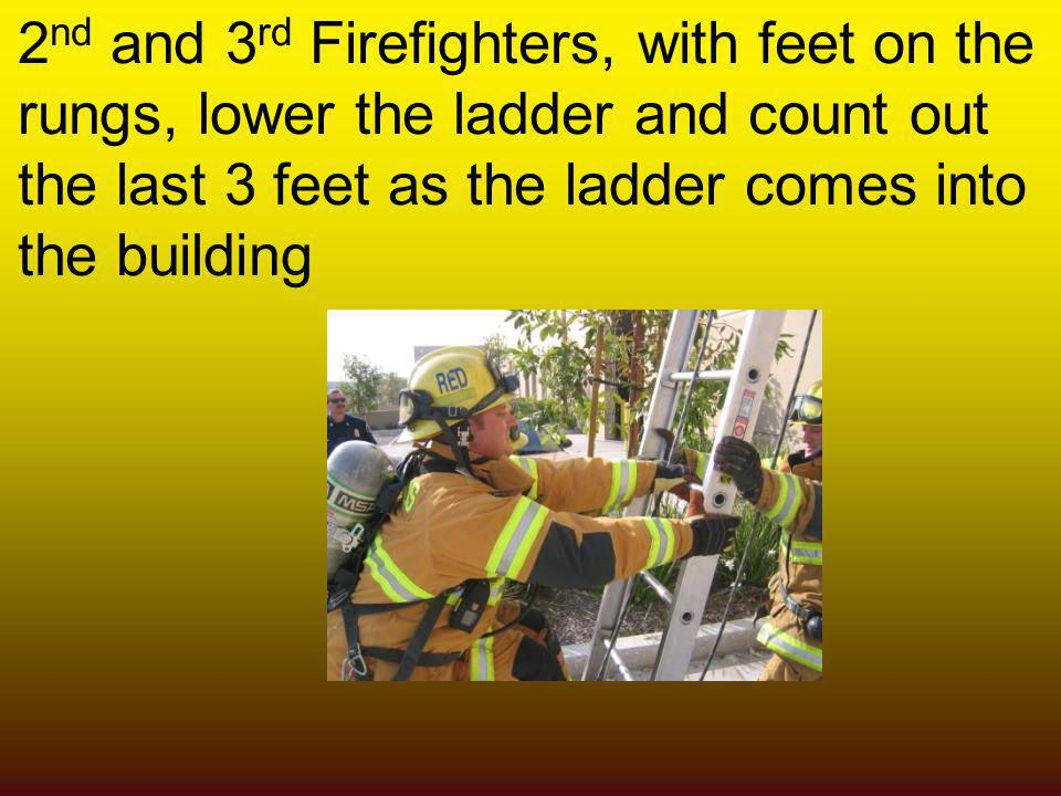 2 nd and 3 rd Firefighters, with feet on the rungs, lower the ladder and count out the last 3 feet as the ladder comes into the building