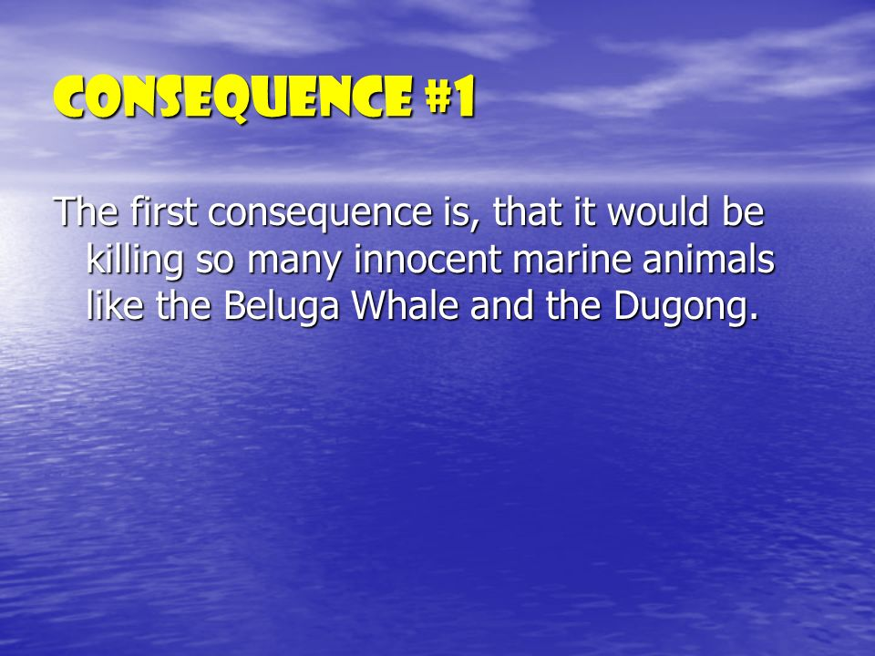 Consequence #1 The first consequence is, that it would be killing so many innocent marine animals like the Beluga Whale and the Dugong.