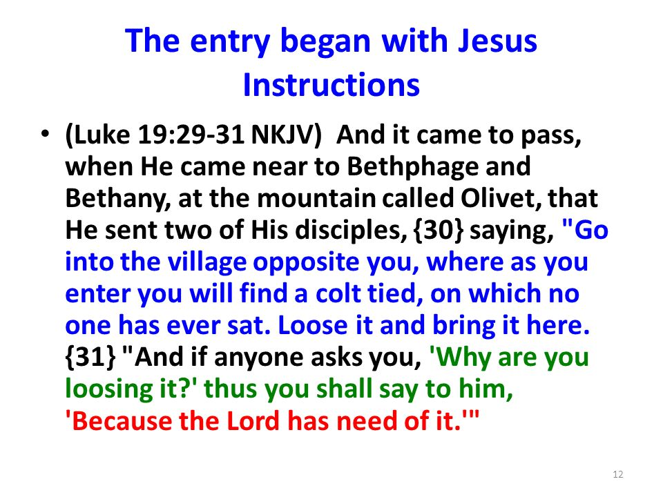 The entry began with Jesus Instructions (Luke 19:29-31 NKJV) And it came to pass, when He came near to Bethphage and Bethany, at the mountain called O