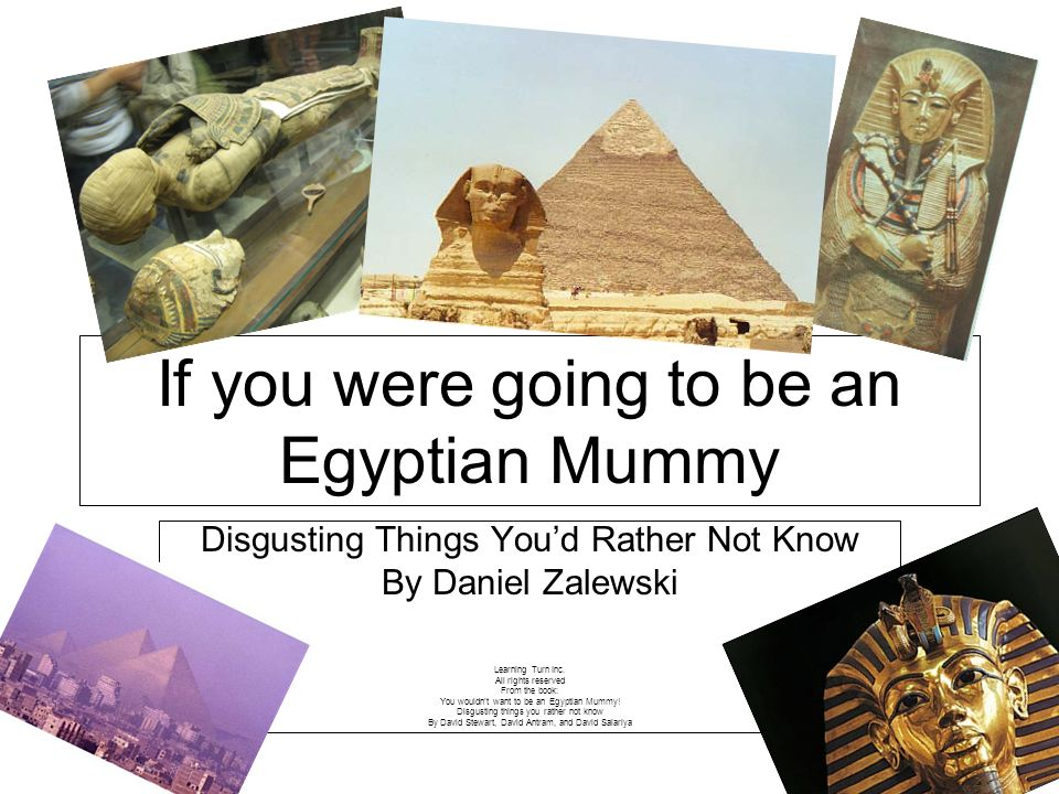 Disgusting Things Youd Rather Not Know By Daniel Zalewski Learning Turn Inc. All rights reserved From the book: You wouldnt want to be an Egyptian Mum