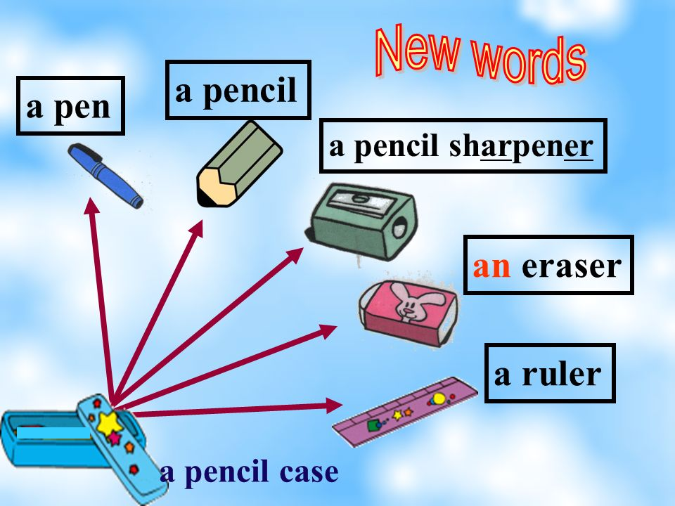 a pencil sharpener a pen an eraser a ruler a pencil a pencil case