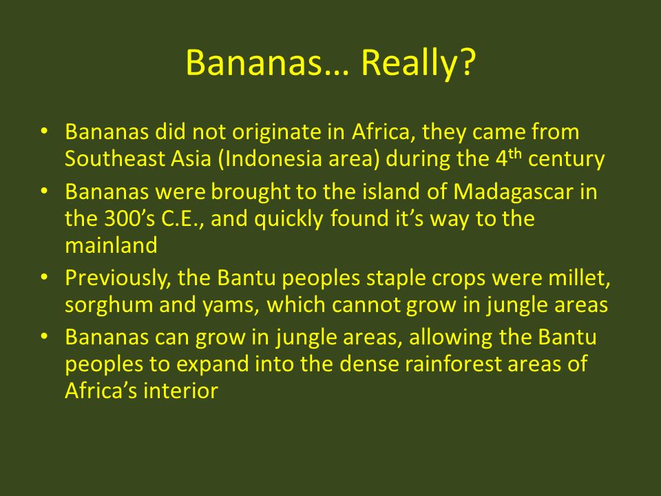 Bananas… Really? Bananas did not originate in Africa, they came from Southeast Asia (Indonesia area) during the 4 th century Bananas were brought to t