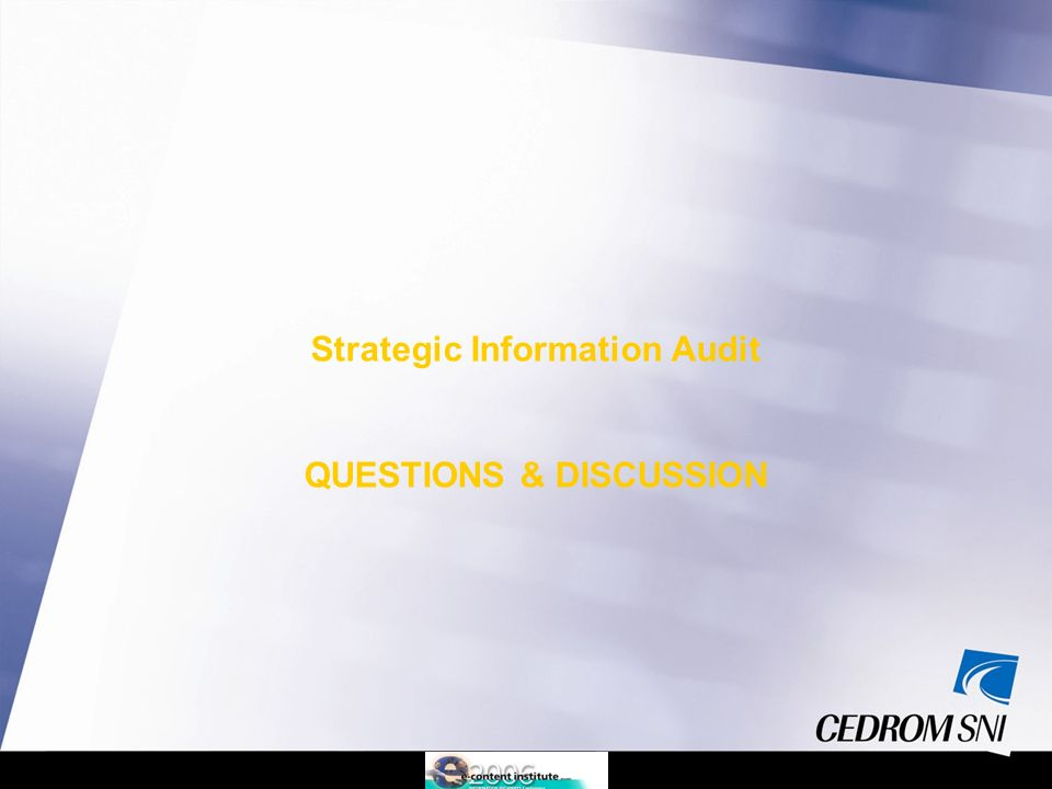 Strategic Information Audit QUESTIONS & DISCUSSION