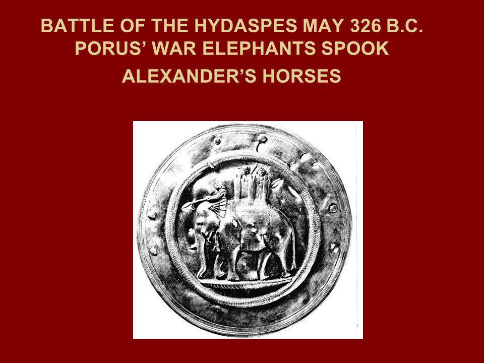 BATTLE OF THE HYDASPES MAY 326 B.C. PORUS WAR ELEPHANTS SPOOK ALEXANDERS HORSES