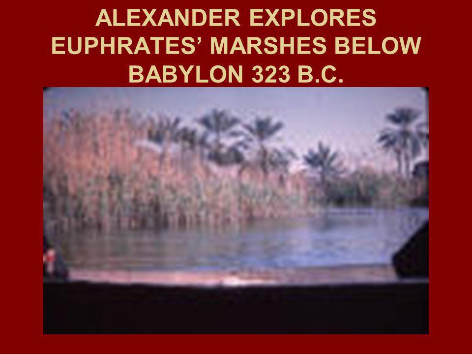 ALEXANDER EXPLORES EUPHRATES MARSHES BELOW BABYLON 323 B.C.