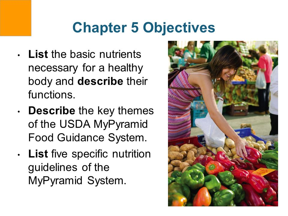 Chapter 5 Objectives List the basic nutrients necessary for a healthy body and describe their functions. Describe the key themes of the USDA MyPyramid