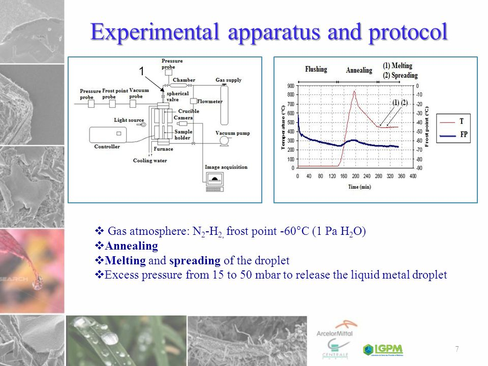 Experimental apparatus and protocol 1 Gas atmosphere: N 2 -H 2, frost point -60°C (1 Pa H 2 O) Annealing Melting and spreading of the droplet Excess p