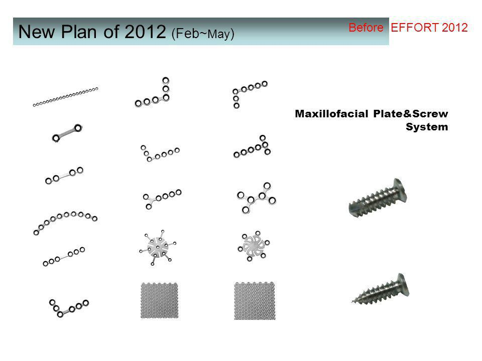 New Plan of 2012 (Feb~ May ) Maxillofacial Plate&Screw System Before EFFORT 2012