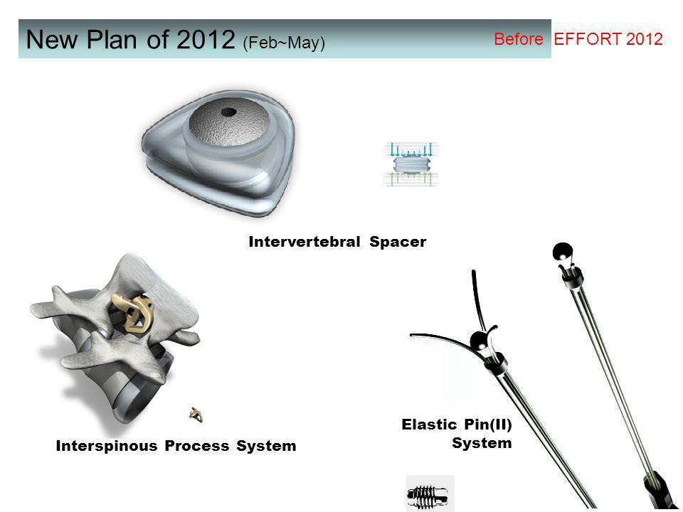New Plan of 2012 (Feb~May) Before EFFORT 2012 Elastic Pin(II) System Interspinous Process System Intervertebral Spacer