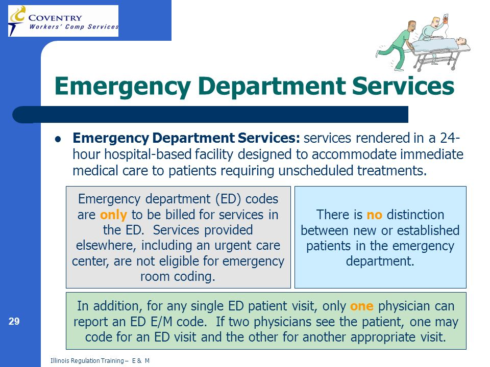 29 Illinois Regulation Training – E & M Emergency Department Services Emergency Department Services: services rendered in a 24- hour hospital-based fa