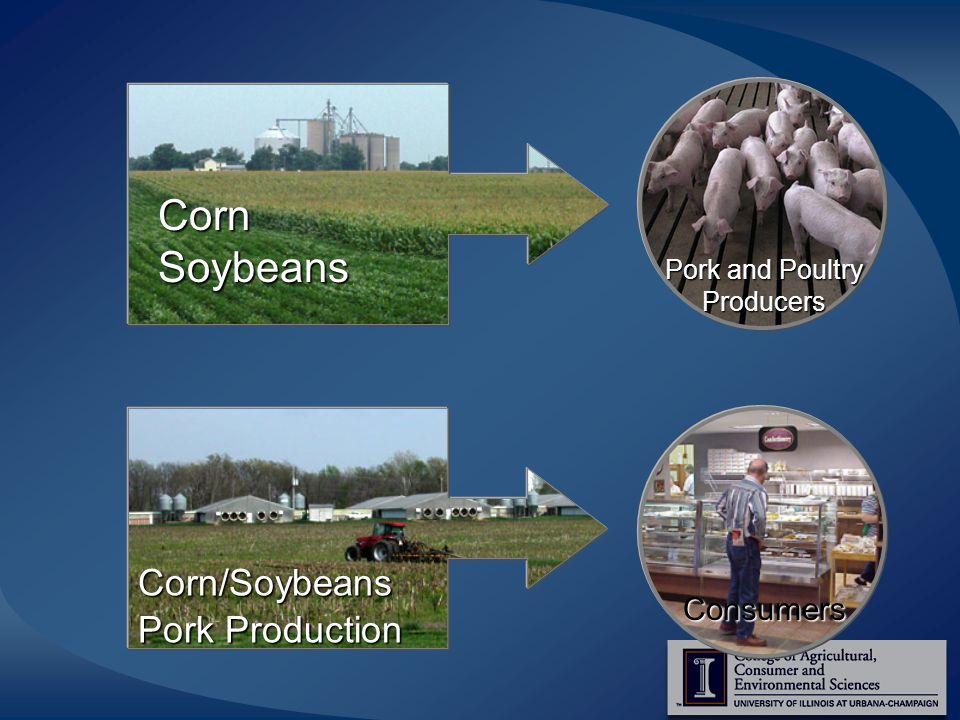 Corn Soybeans Consumers Corn/Soybeans Pork Production Pork and Poultry Producers