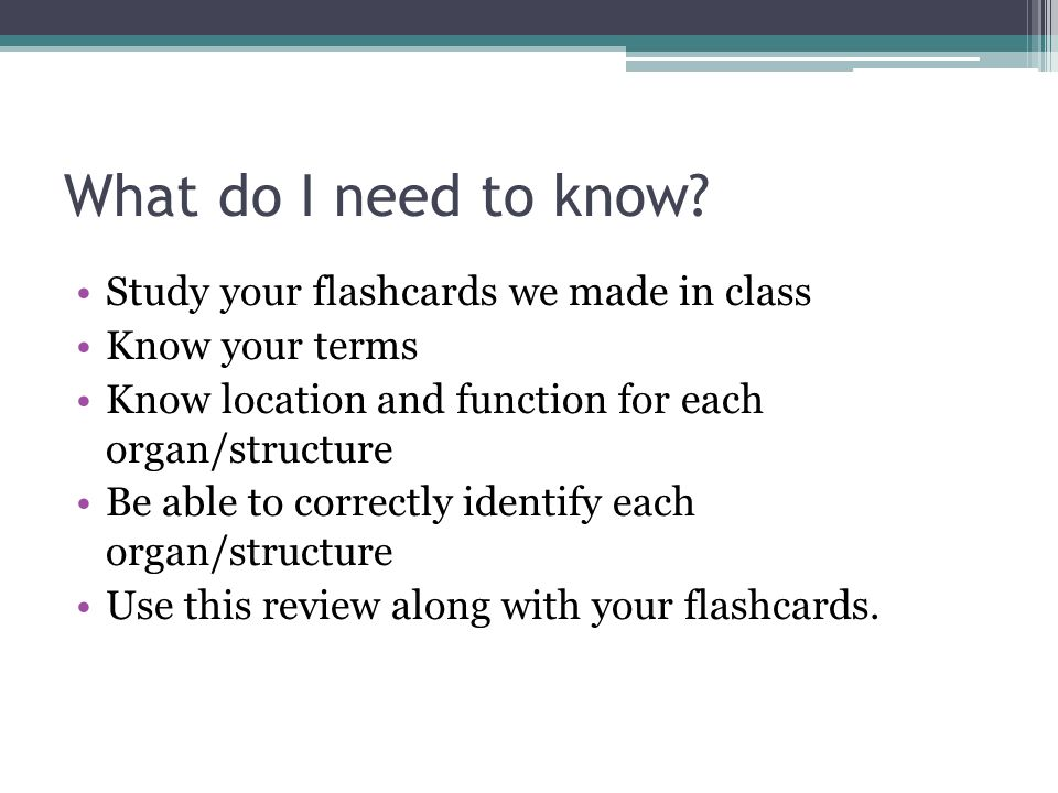 What do I need to know? Study your flashcards we made in class Know your terms Know location and function for each organ/structure Be able to correctl