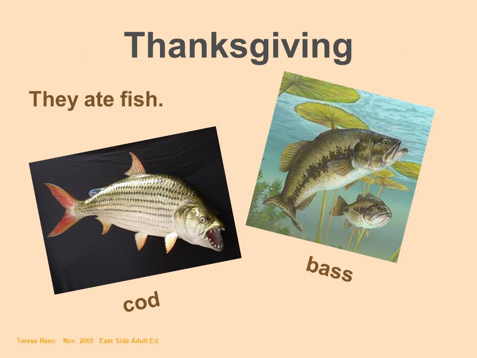 Thanksgiving They ate fish. cod bass Teresa Reen Nov. 2009 East Side Adult Ed