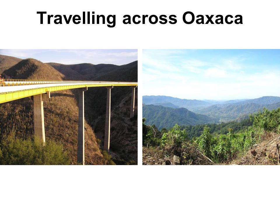 Travelling across Oaxaca