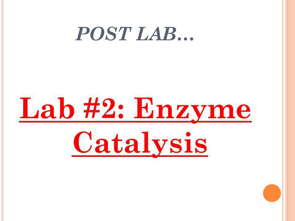 POST LAB… Lab #2: Enzyme Catalysis