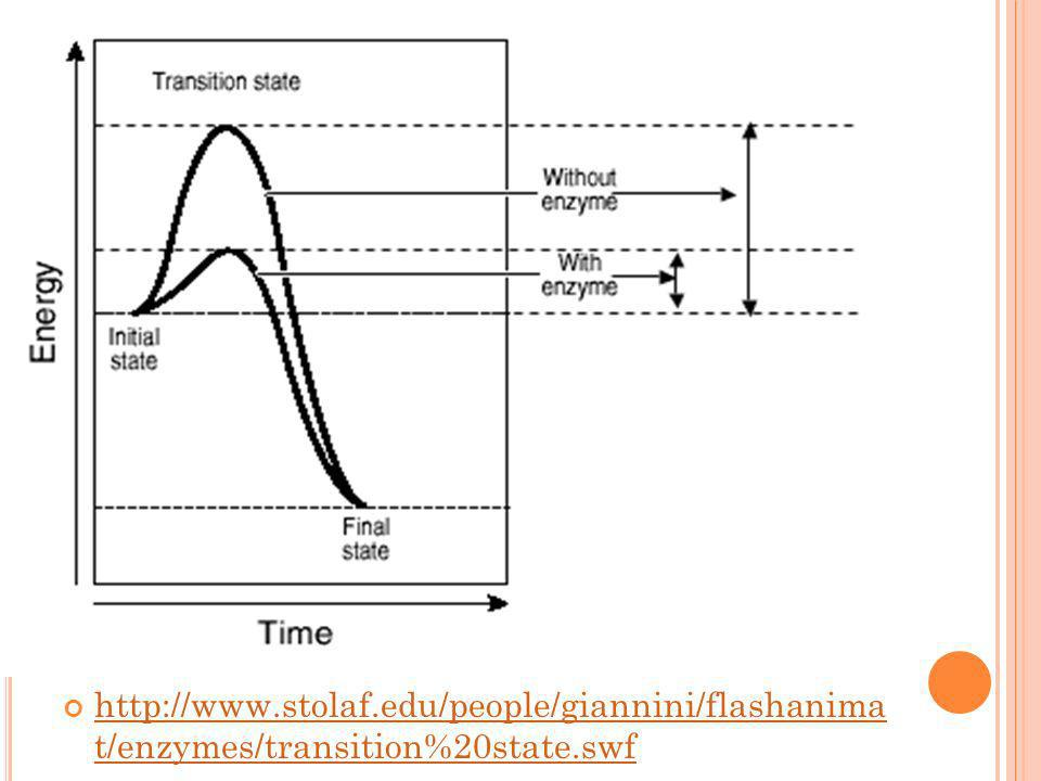 http://www.stolaf.edu/people/giannini/flashanima t/enzymes/transition%20state.swf http://www.stolaf.edu/people/giannini/flashanima t/enzymes/transitio