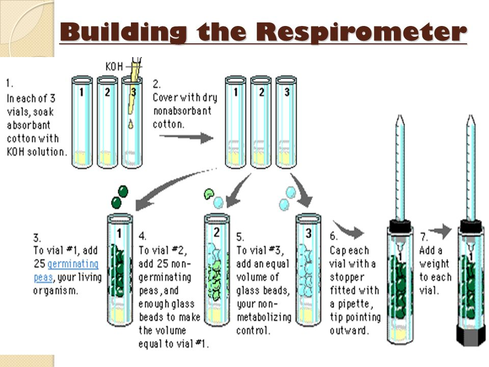 Building the Respirometer