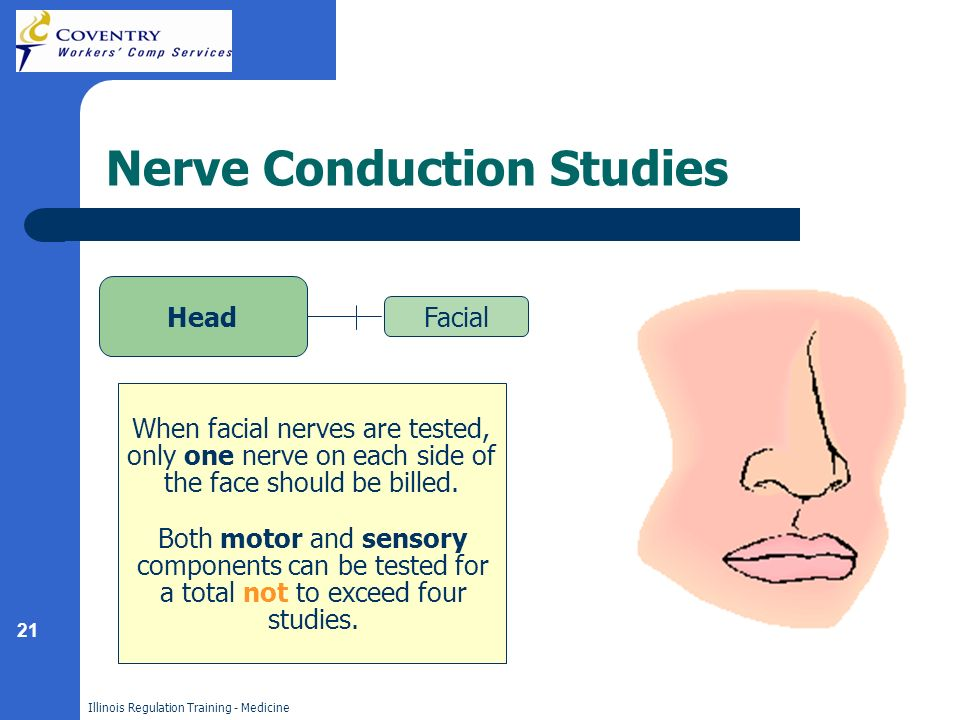 21 Illinois Regulation Training - Medicine Nerve Conduction Studies Head Facial When facial nerves are tested, only one nerve on each side of the face