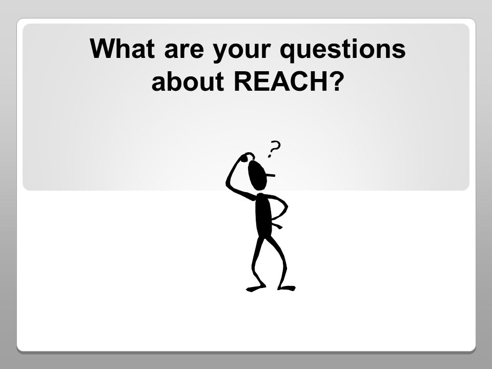 What are your questions about REACH