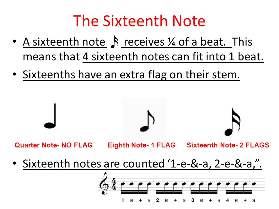 The Sixteenth Note A sixteenth note receives ¼ of a beat. This means that 4 sixteenth notes can fit into 1 beat. Sixteenths have an extra flag on thei