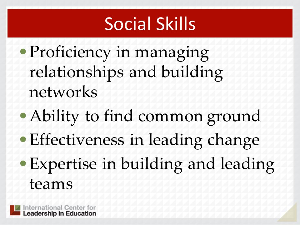 Social Skills Proficiency in managing relationships and building networks Ability to find common ground Effectiveness in leading change Expertise in building and leading teams